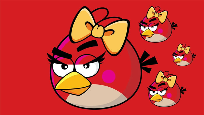 Female Red Bird HD Wallpaper
