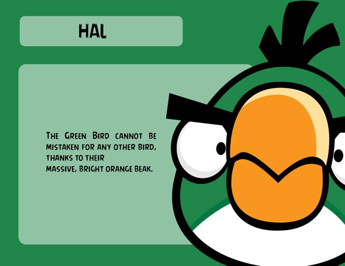 Green Bird Character