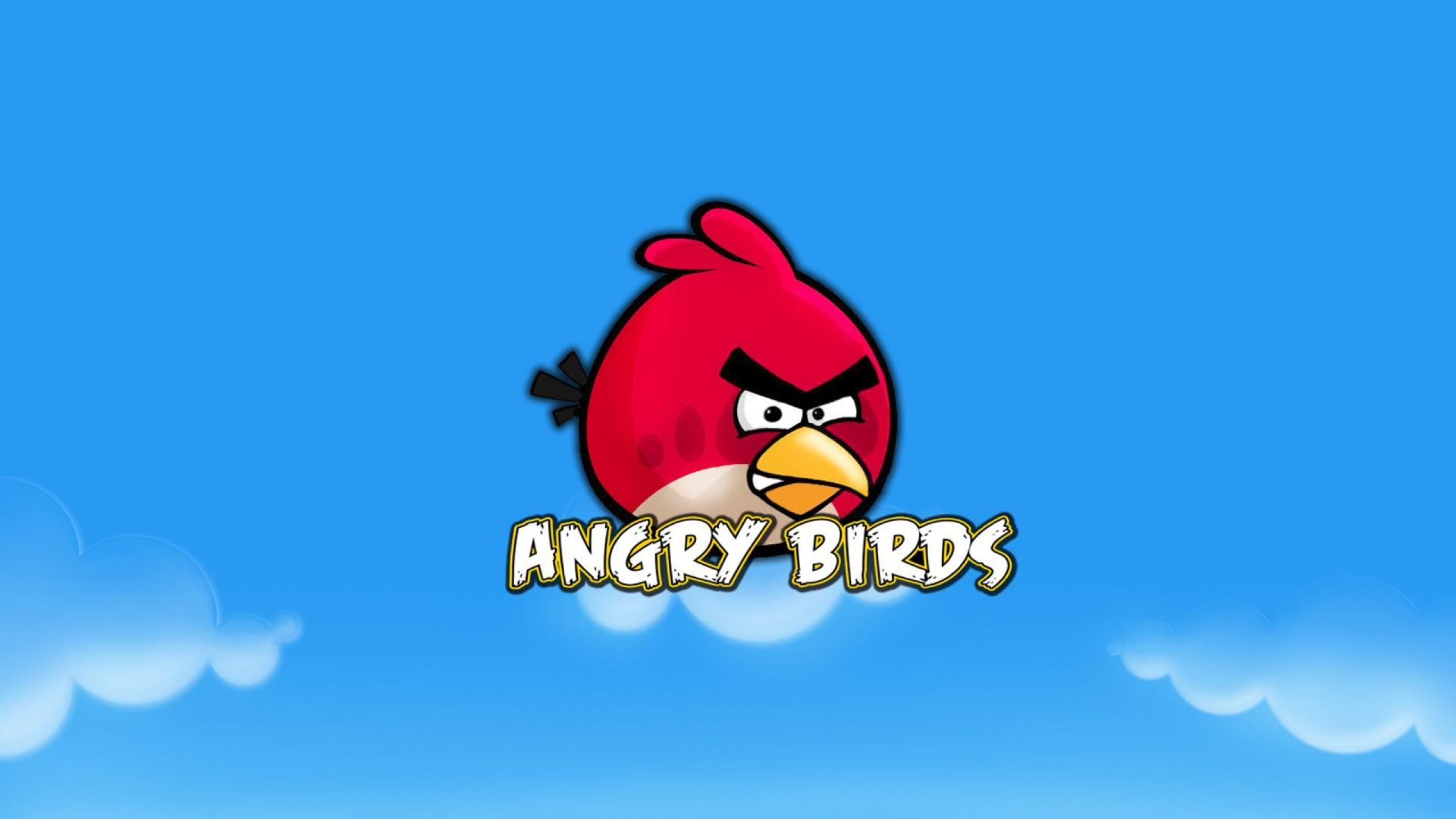red bird hd wallpaper - angry birds wallpapers